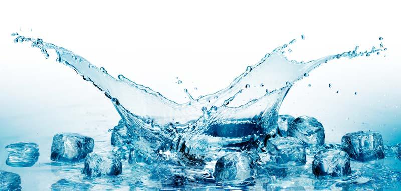 Reality stars take the ice bucket challenge