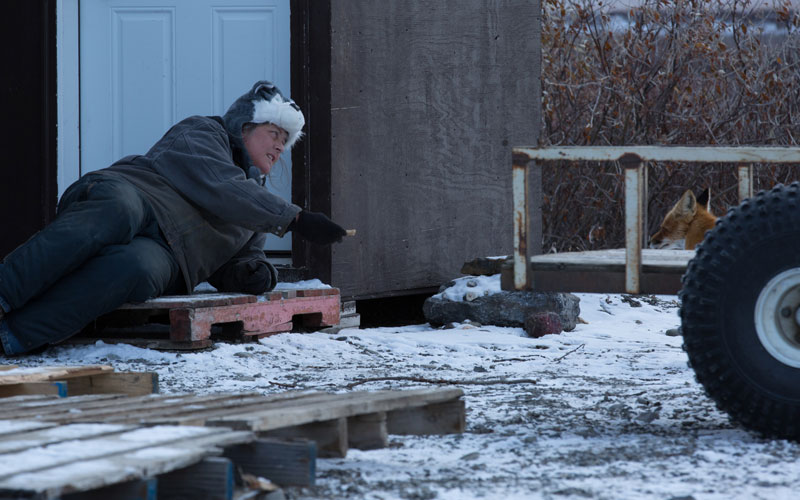 Life Below Zero, Sue Aikens, Kavik, fox