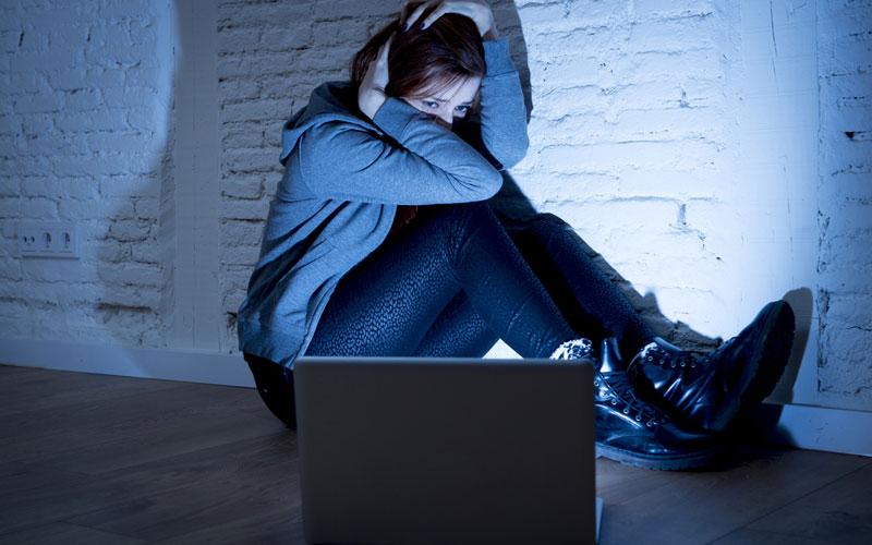 #MoreThanMean, sportswriters, online harassment, women