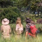 Interview: How Mygrations followed 20 people across the Serengeti