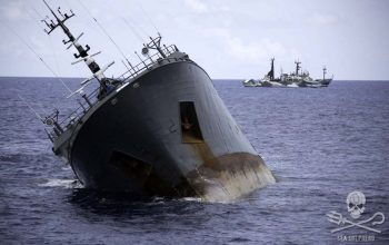 Sea Shepherd, Thunder, sinking