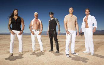 Gigolos season six cast, Ash, Brace, Nick, Vin, Bradley