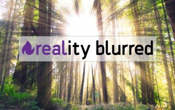 reality blurred, new logo, sunlight through forest trees