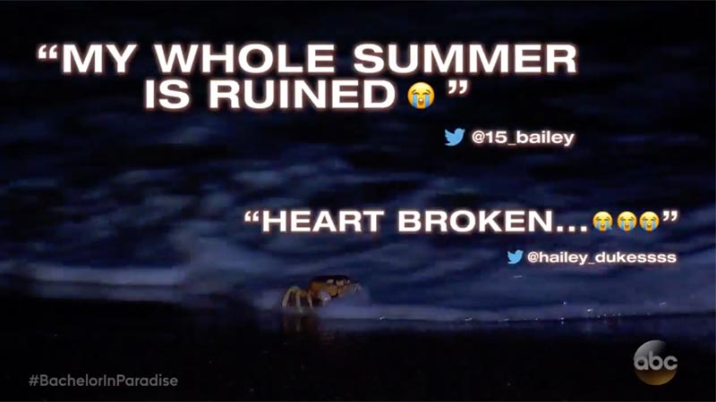 Bachelor in Paradise summer ruined promo
