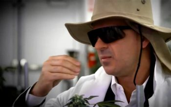 Marcus Lemonis explores weed, Car Week, and other reality TV highlights