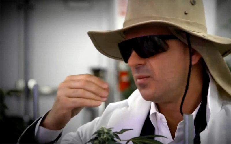 Marcus Lemonis, The Profit: Marijuana Millions