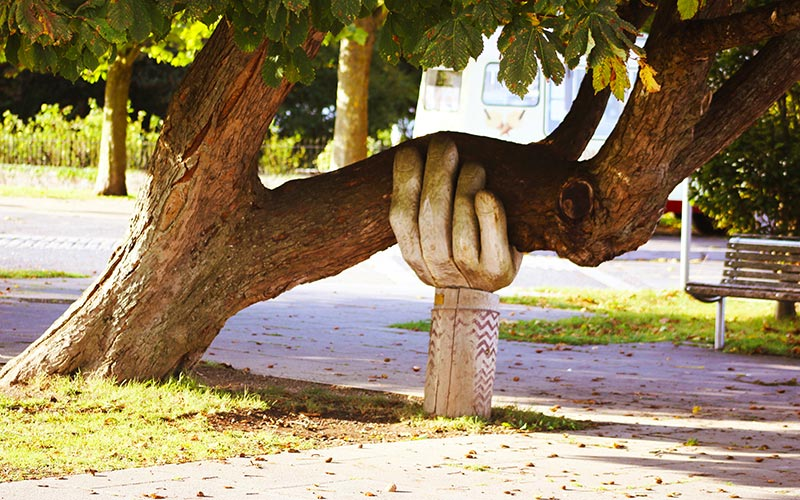 a carved hand holding up a tree branch
