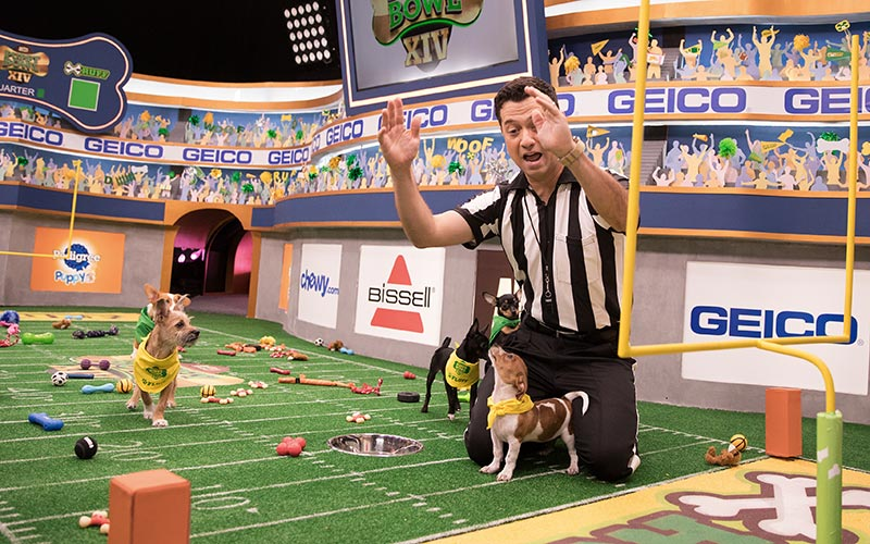 Puppy Bowl XIV, referee Dan Schachner