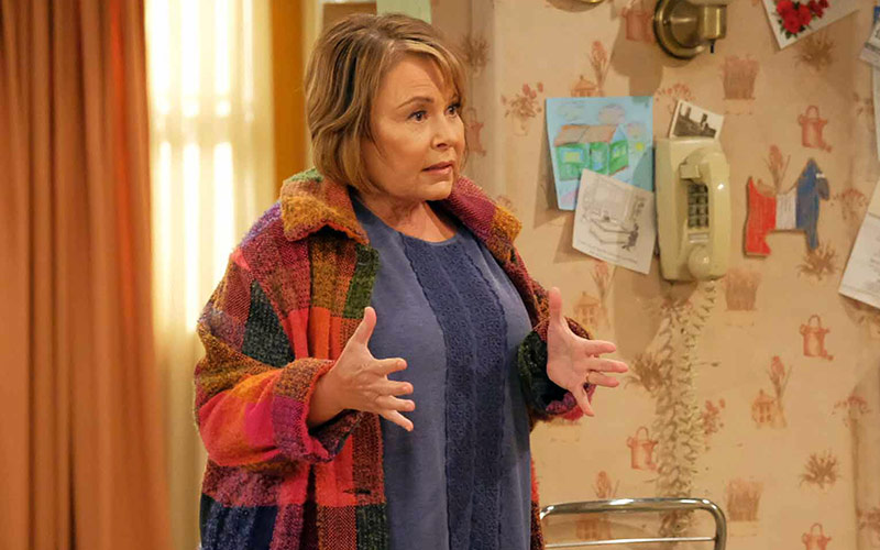 Roseanne Barr, Roseanne