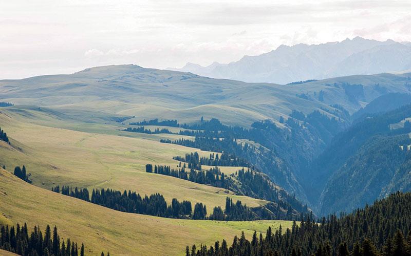 Mongolia, Alone season 5, History