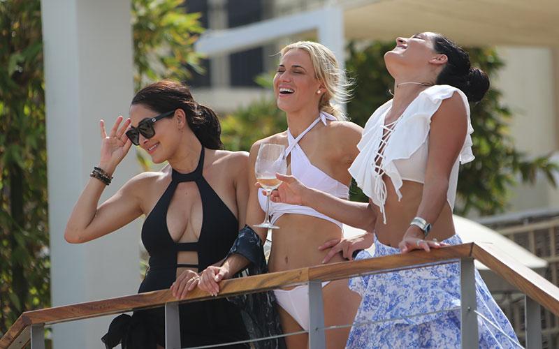 Nikki Bella, Lana, Brie Bella, Total Divas