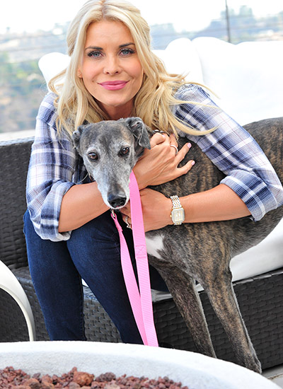McKenzie Westmore, greyhound