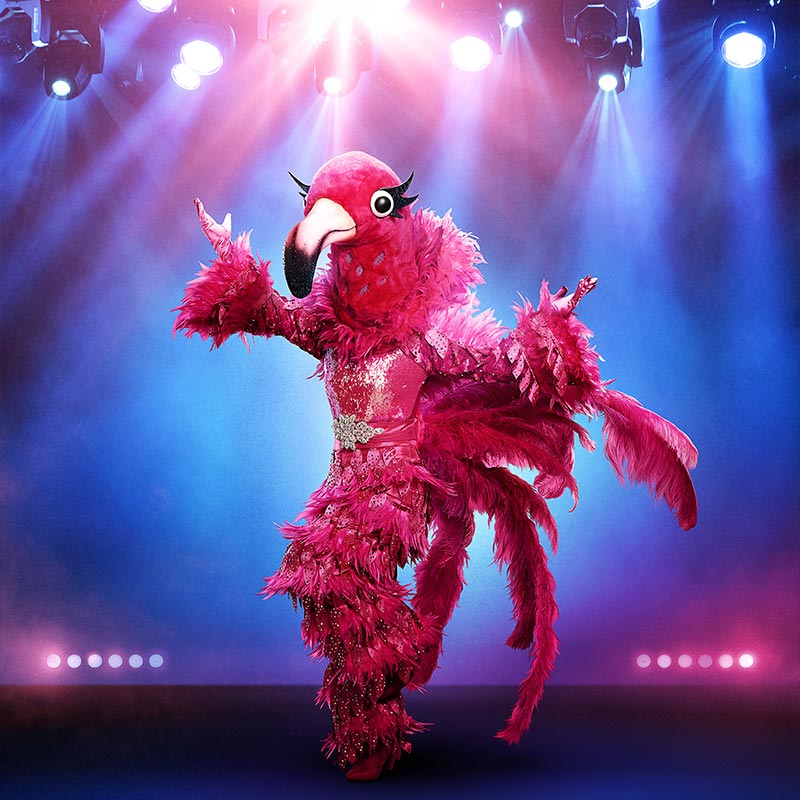 Flamingo on The Masked Singer season 2