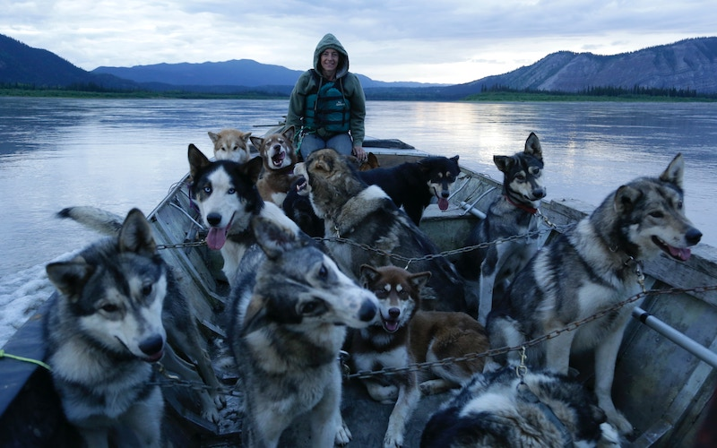 On Life Below Zero season 6, Denise Becker travels home to Calico, Alaska, with her dogs