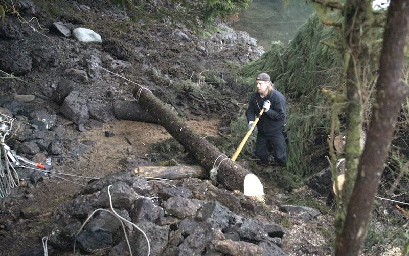 On Life Below Zero: Port Protection, David Squibb builds a retaining wall on his property using fallen trees