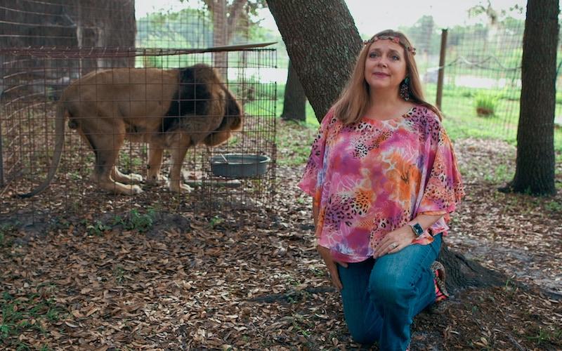Big Cat Rescue's Carol Baskin in Tiger King