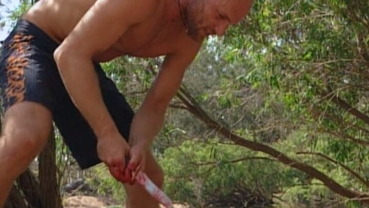 Survivor's first deadlocked vote, a pig stabbing, and actual strategizing
