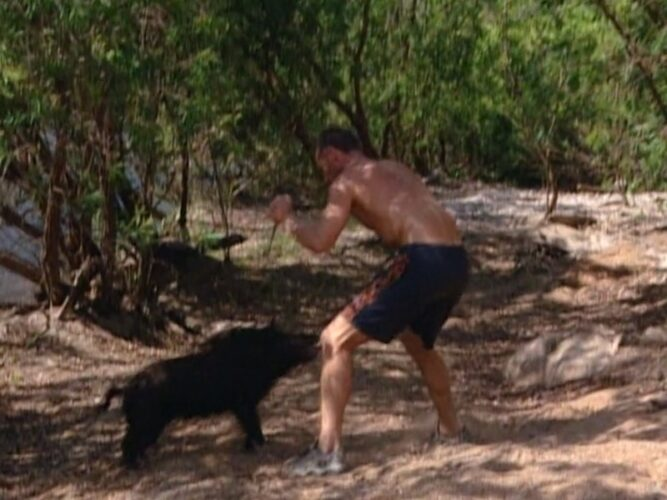 The moment before Michael Skupin stabbed a pig during Survivor: The Australian Outback episode 4, creating international outcry