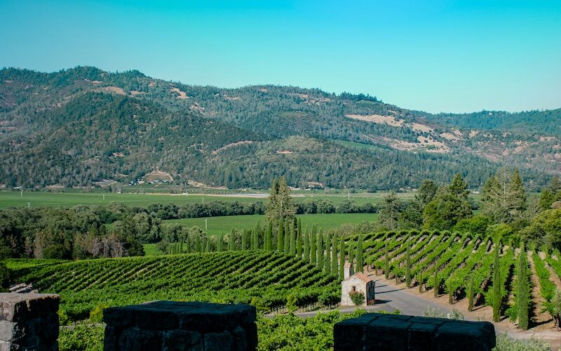 The grounds of Castello di Amorosa in Calistoga, Calif., a winery in Napa Valley that was used as the location for The Quest season 2 on Disney+