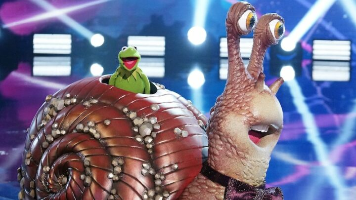 The Masked Singer is just stupid now