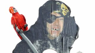 Mythbusters Grant Imahara created this pop-up pirate version of himself, which is now being auctioned off.